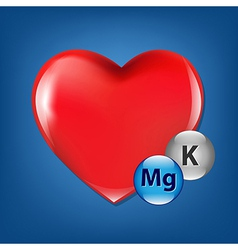 Red Heart And Vitamins vector image vector image
