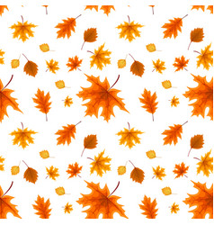 autumn orange and red fallen leaves seamless vector image