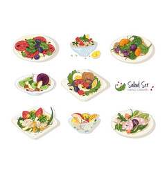 Collection various salads lying on plates and vector