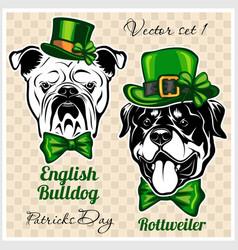 english bulldog and rottweiler - dog heads vector image