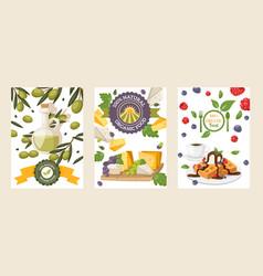 Natural organic food banners vector