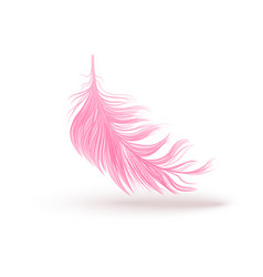 Pink swirled feather close up 3d realistic vector
