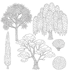 Trees outline vector