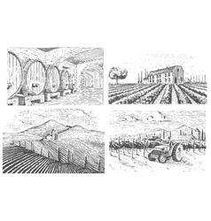 Vintage engraved hand drawn vineyards landscape vector image