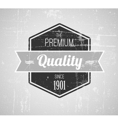 retro vintage grunge label vector image