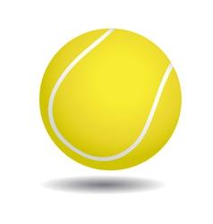 yellow tennis ball vector image vector image