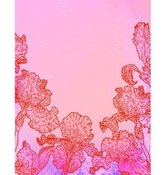 Card with iris flowers on pink watercolour vector image
