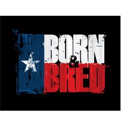 texan flag born n bred vector image
