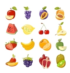juicy fruits collection vector image