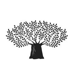 tree oak logo or label nature ecology vector image