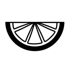 citurs fruit lemon slice on white background vector image