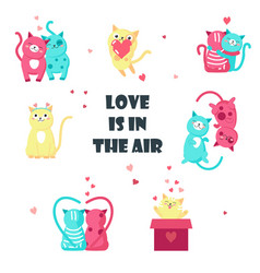 cute cats in love isolated vector image