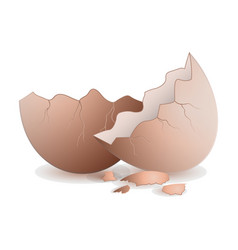 Half egg icon realistic icon vector