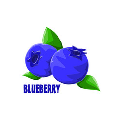 logo icon design blueberry farm vector image
