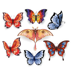 Set of Bright Exotic Butterflies vector image