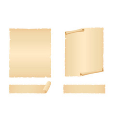 sheets and pieces old paper vector image