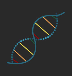 spiral chain dna isolated vector image