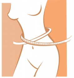 waistline vector image