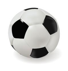 classik soccer ball vector image