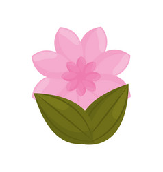 pink flower garden bud with leaves vector image vector image