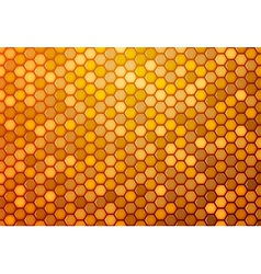 Abstract background from hexagons vector image