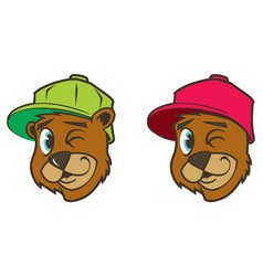 cartoon bear with baseball cap vector image