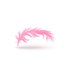 light pink feather floating in air fluffy bird vector image