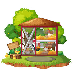 many chickens in the coop vector image