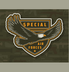 Vintage colorful army patch vector