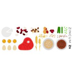 vitamin zincum foods flat icons set vector image