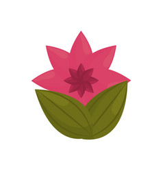 flower petal bud with leaves vector image