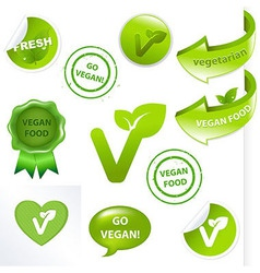 Vegan Elements Set vector image vector image