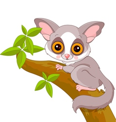 cartoon Galago vector image