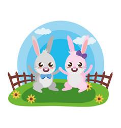 cute rabbit couple vector image