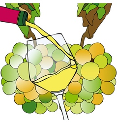 Grapes and White Wine vector image