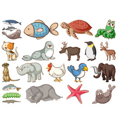 Large set wildlife with many types animals vector