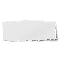 White oblong paper tear isolated on vector