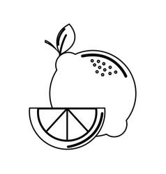 Silhouette lemon fruit icon stock vector