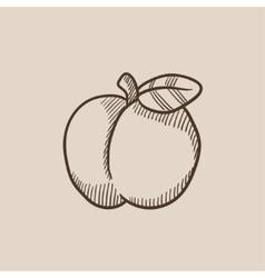 Apple sketch icon vector