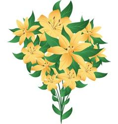 Bunch lilies vector