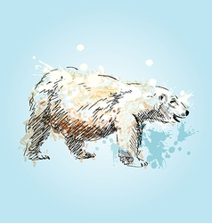 Colored sketch of a polar bear vector