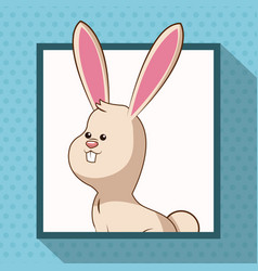 Cute rabbit frame picture vector