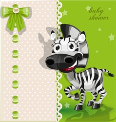 Delicate green baby shower card with zebra vector image