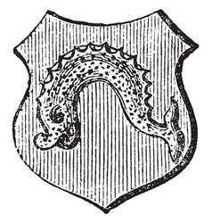 Dolphin embowed is a dolphin naiant embowed vector