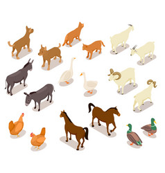 Farm animals isometric horse and dog cat vector