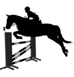 jumping showequestrian sport horse with jockey vector image