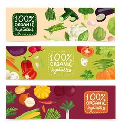 organic vegetables horizontal banners vector image