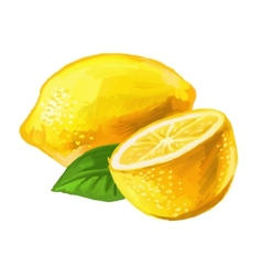 picture of lemon vector image