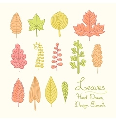 set leaves in cartoon style vector image