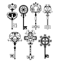 Set of Contoured Keys vector